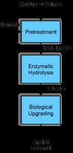Biocatalyst preservation process